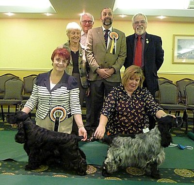 Puppy & Veteran winners Jan 2013